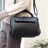 lianlian Shoulder Bags Bolso Crossbody Ocasional de la PU de Cuero Bolso de Las señoras del Mensajero del Bolso (Negro) (Color : Black)