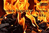 EDURAIT Carbón Vegetal Ecologico de Encina, para Barbacoas, Procedente de la Poda de Dehesas, Alto Poder calorífico, Larga Duración, Especial Barbacoas y Restaurantes. (Carbon 30Kg)