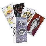 ORACLE TARJETAS Tarot Deck Adivinación El salvaje Desconocido Animal Spirit Deck Los conjuntos de libros Starseed para la fiesta de amigos de la familia