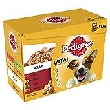 Pedigree Beutel Favoriten In Gelee Hundefutter (4 Packungen) (4 x 12 x 100g) (Fleischsorten)