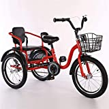 Kids Bicycle, Three Wheel Bikes for Kids Boys Girls, Tricycle 16 18 Inch 3 Wheel Bikes Cruise Bicycles Comfortable Two-Seater, Convenient Handle Design, Tricycles for 2-12 Year Olds Children Trikes wi