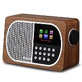 LEMEGA M2+ 7W Portable Internet FM Digital Radio with Wi-Fi, Bluetooth, USB, Aux & TFT Colour Display –Walnut