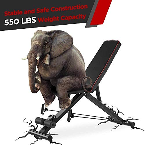 Yoleo Adjustable Weight Bench, Upgrade Version- Seat/Back/Feet Adjustable, 550 lbs Capacity, Folding Flat/Incline/Decline FID Bench, Perfect for Full Body Workouts and Home Gym