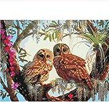 DIY digitale Ölgemälde Färbung auf Leinwand Hand gezeichnet von Zahlen Zeichnung Eule Tiere Bilder Kits Wandkunst Wohnkultur 40x50cm (Rahmenlos)