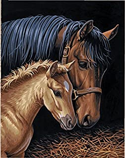 Dimensions Horse Family Paint by Numbers for Adults, 11'' W x 14'' L