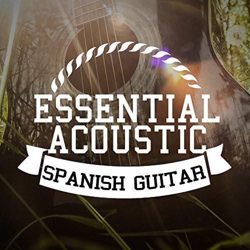 Acoustic Guitar, Acoustic Spanish Guitar & Guitar