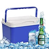 Portable Large 12L Cooler Box, Durable And Easy to Carry, On-Toxic And Can Be Used for A Long Time, Convenient for Outdoor Travel or Home Use