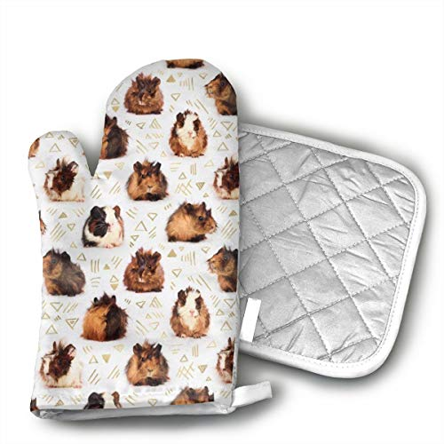 Guinea Pigs Oven Mitts and Potholders (2-Piece Sets) - Kitchen Set with Cotton Heat Resistant,Oven Gloves for BBQ Cooking Baking Grilling