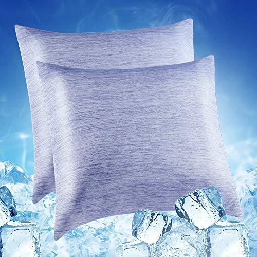 Lot de 2 Taie d oreiller Froid Refroidissement à Fibre RespiranteArc-Chill Japonais Q-Max 0,4 Luxear Taie d oreiller Rafraîchissante Douce Recto-Verso avec Fermeture à Glissière Cachée Bleu 65x65cm