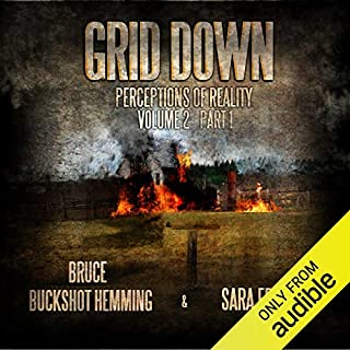 Grid Down Perceptions of Reality audiobook cover art