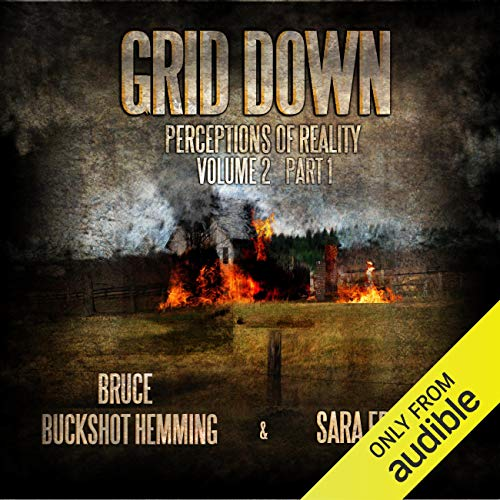 Grid Down Perceptions of Reality cover art