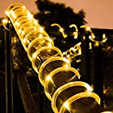 Honche Solar LED Rope Tube Light Outdoor String Waterproof for Party Garden (Warm White 33FT 100L)