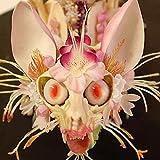 AIMADO Samen-Rarität 50 Stück Ixora chinensis Samen exotische Saatgut aus China kleinen Blütenköpfchen Sommer Blumen feinen Duft,Blumensamen für Ihre Garten Balkon