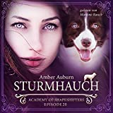 Sturmhauch: Academy of Shapeshifters 20