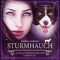 Sturmhauch Hörbuch