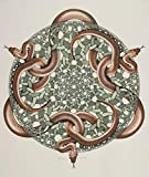 Berkin Arts Maurits Cornelis Escher Giclee Kunstdruckpapier