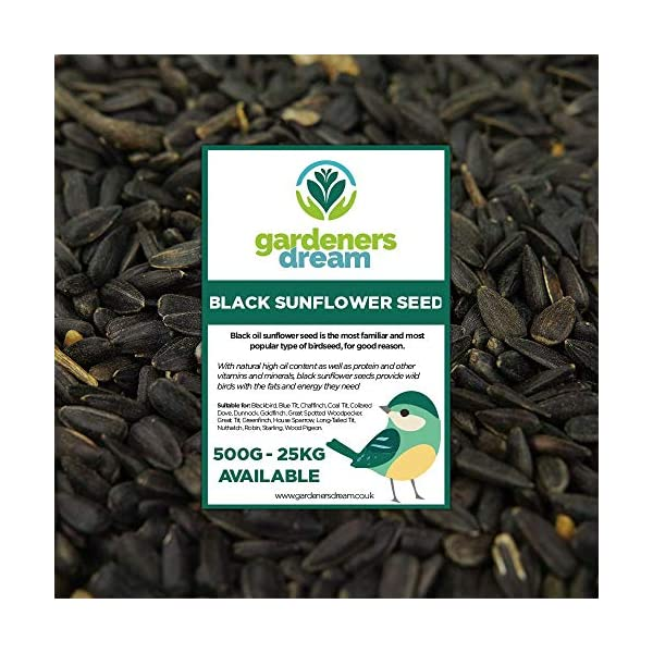 GardenersDream Black Oil Sunflower Seeds | Premium Quality Garden Wild Bird Food | Full of Protein, Rich in Oil Mix | Nutritious, High Energy Mixture | Perfect Year-Round Feeding for Birds
