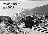 Dampfloks in der DDR (Wandkalender 2021 DIN A3 quer)