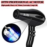 Beauty Shopping Professional Hair Dryer, 1875W Tourmaline Ceramic Blow Dryer with Diffuser &