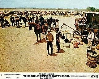 Culpepper Cattle Co Original Lobby Card Gary Grimes Billy Green Bush