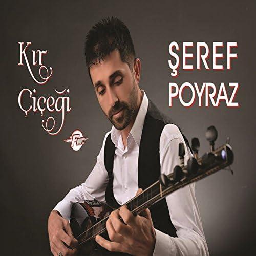 Şeref Poyraz