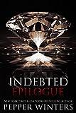 Bargain eBook - Indebted Epilogue