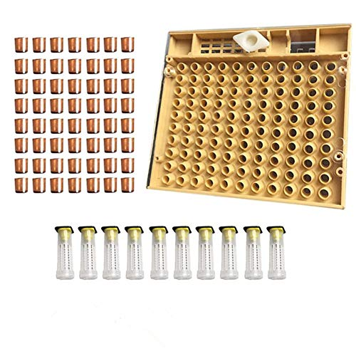 Beekeeping Complete Queen Rearing Cell Cup kit Catcher Box Hair Roll Cage Cupularve Apiculture System Bee Keeper Tool Set