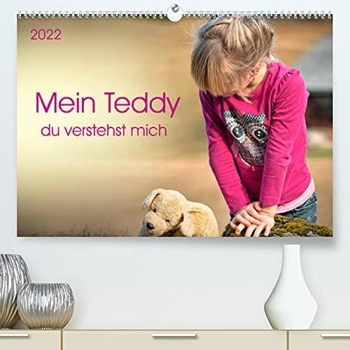 Mein Teddy - du verstehst mich (Premium, hochwertiger DIN A2 Wandkalender 2022, Kunstdruck in Hochglanz): Meinen Teddy hab ich sehr lieb, er ist der ... 14 Seiten ) (CALVENDO Hobbys)