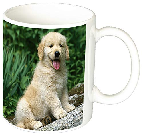 Golden Retriever Cachorros Puppies M Tasse Mug