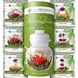 Fiori di tè Teabloom Con foglioline di tè della migliore fioritura - 12 Confezioni - 36 infusioni, 250 tazze - Foglie di tè verde con Gelsomino