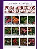 Guía Práctica Completa Poda y Arreglos de Árboles y...