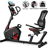 HARISON Magnetic Recumbent Exercise Bike Stationary bike for Seniors 350 LBS Capacity with 14 Level Resistance, iPad Holder, Pulse, Adjustable Seat and Transport Wheels( B8)