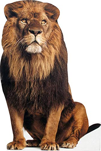 aahs!! Engraving Animal Life Size Cardboard Cutout Stand Up   Standee Picture Poster Photo Print (Lion)