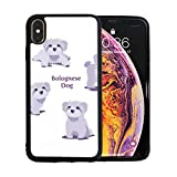 iPhone Xs Max Case, Bolognese Dog Shockproof Series Hard PC+ TPU [Drop Shock Resistance] [Anti-Scratch] Protective Case for Apple iPhone Xs Max 6.5 Inch 2018 Release