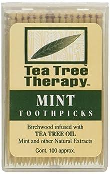 Tea Tree Therapy Tea Tree Toothpicks 100 Picks  Pack of 12