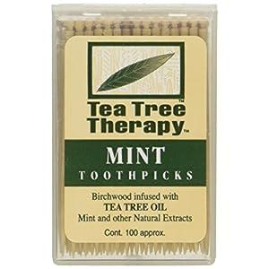 Tea Tree Therapy Tea Tree Toothpicks 100 Picks (Pack of 12)