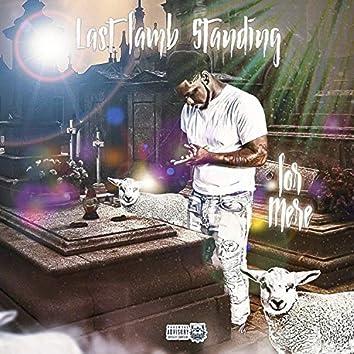 Last Lamb Standing