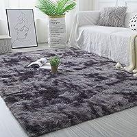 Leesentec ラグ カーペット ラグマット 洗える 絨毯 シャギーラグ 一年中利用タイプ 7色選べる 滑り止め付 防ダニ 抗菌 防臭 冷房対策 床暖房対応 ふわふわ スクエア センターラグ (ブラックグレー)