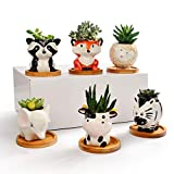 6Pack Small Ceramic Animal Succulent Planters with Drainage and Wooden Tray Saucer Lovely Unique Gift Fox Panda Cow Elephant Sheep Zebra Assorted