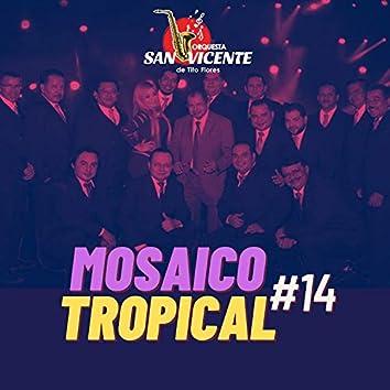Mosaico Tropical 14