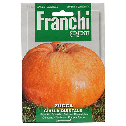 Seeds of Italy Ltd. Franchi Graines de potiron Quintal