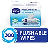 Nice 'N Clean Moist Flushable Wipes, Infused w/Aloe & Vitamin E, 60 Wipes (Pack of 5)