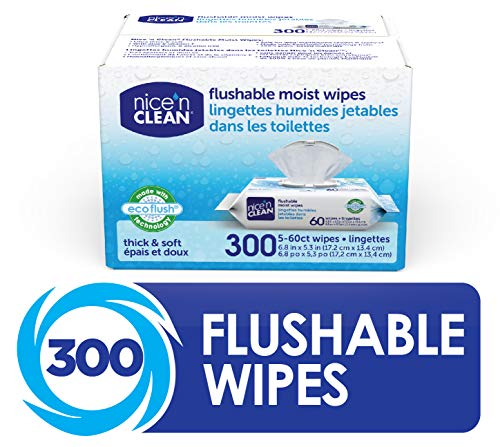 Nice 'N Clean Moist Flushable Wipes (300 Total Wipes) |