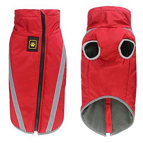 Aiboria wasserdichter Hundemantel Winterwarme Jacke mit Gurtloch Outdoor Sport wasserdichte Hundekleidung Outfit Weste für kleine mittelgroße Hunde (rot, XL)