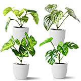 Kazeila Mini Plantas Artificiales de Interior en macetas, Planta de plástico Falso de 15 cm para decoración de casa / Oficina / Escritorio (4 Pack)