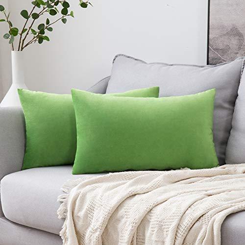 MIULEE Confezione da 2 Federe in Velluto Copricuscini Decorativi Fodere Quadrate per Cuscino per Divano Camera da Letto Casa30X50cm Erba Verde
