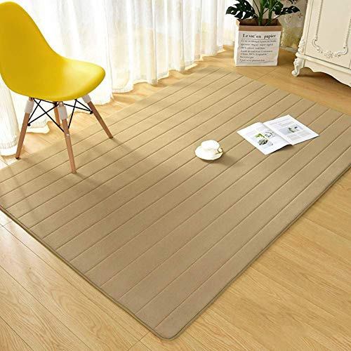 HIGHKAS Modern Area Rug,Fluffy Carpet,Soft Floor mats Anti-Skid Home Decor Rug mats Tatami Mat Living Room Bedroom Rug-Caki-B 100x150cm(39x59inch)