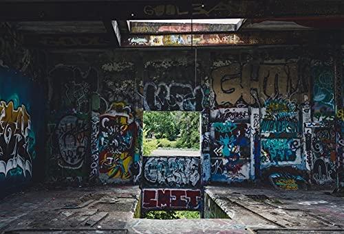 Fondos de fotografía de Interiores de habitación desierta de Graffiti, Fondos fotográficos de Pared de Cemento de ladrillo para Estudio fotográfico A5 10x7ft / 3x2,2 m