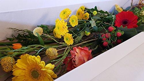 Flora Trans -Blumenabo frische Schittblumen versenden, Blumenabo