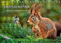 Eichhoernchen - immer wieder suess (Tischkalender 2022 DIN A5 quer): Eichhoernchen - flinke kleine Kobolde in Wald und Park. (Monatskalender, 14 Seiten )
